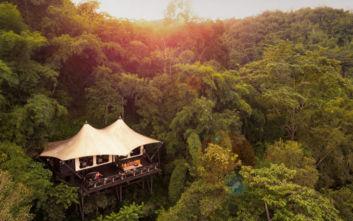 Όλη η πολυτέλεια του κόσμου κρυμμένη μέσα στη… ζούγκλα