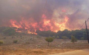 Φωτιά τώρα στην Κνωσό - Στην περιοχή υπάρχουν διάσπαρτα σπίτια
