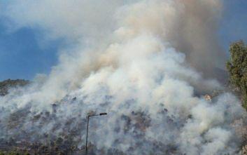 Μάχη με πολλές εστίες και αναζωπυρώσεις δίνουν οι πυροσβέστες στο Λουτράκι