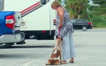 Γυναίκα κλώτσαγε και έπνιγε με το λουρί τον σκύλο της