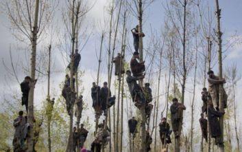 Στον Νταρ Γιασίν το διεθνές βραβείο φωτορεπορτάζ «Γιάννης Μπεχράκης»