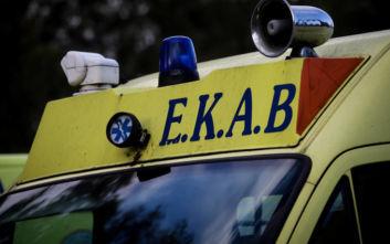 Φθιώτιδα: Σοβαρά τραυματισμένο μωράκι που έπεσε από ύψος και χτύπησε το κεφάλι του