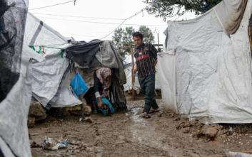 Διεθνής Αμνηστία σε Ελλάδα: Δώστε δωρεάν πρόσβαση στο σύστημα υγείας στους αιτούντες άσυλο