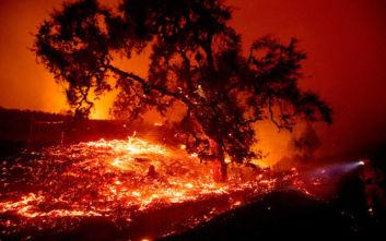 Πρωτόγνωρη πύρινη λαίλαπα καταστρέφει ολόκληρες πόλεις στο Όρεγκον