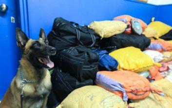 «Μπλόκο» στην Πελασγία και σύλληψη Αλβανού για μεταφορά έξι κιλών ηρωίνης