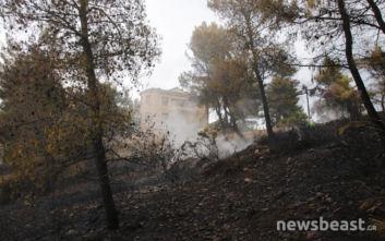 Έσβησε η φωτιά που είχε ξεσπάσει κοντά σε σπίτια στο Βαρνάβα