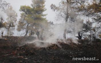Φωτιά τώρα στον Βαρνάβα κοντά σε σπίτια