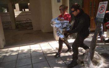 Δικογραφία σε βάρος της 24χρονης που άφησε το μωρό της σε είσοδο πολυκατοικίας στη Θεσσαλονίκη