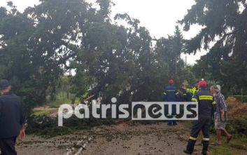 Ατύχημα προκάλεσε η πτώση δέντρου από τη κακοκαιρία στον Πύργο