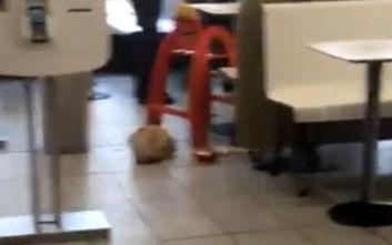 Ανήλικος επιτέθηκε και τραυμάτισε πελάτες μέσα σε φαστφουντάδικο στο Μάντσεστερ