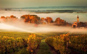 Πού να πας στη Γαλλία αν είσαι λάτρης του εκλεκτού κρασιού