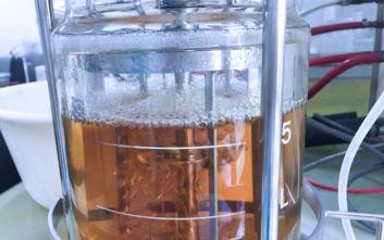 Κάθε φορά που έτρωγε υδατάνθρακες, ο οργανισμός του έφτιαχνε… αλκοόλ