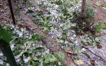 Καιρός: Χαλάζι, ξεριζωμένα δέντρα και ζημιές στη Φθιώτιδα