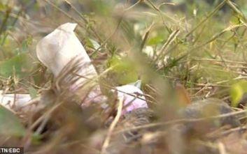 Μια 19χρονη εγκατέλειψε το νεογέννητο μωρό της μέσα σε σακούλα και το έφαγαν τα σκυλιά