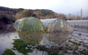 Κακοκαιρία Βικτώρια: Ζημιές σε 100 στρέμματα θερμοκηπιακών καλλιεργειών στα Χανιά