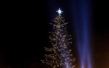 Χριστούγεννα 2019: Εντυπωσιακές εικόνες από τη φωταγώγηση του υψηλότερου φυσικού δέντρου στην Ελλάδα