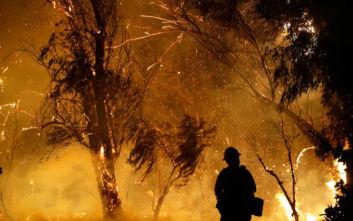 Επικίνδυνος συνδυασμός στις ΗΠΑ COVID-19 και δασικές πυρκαγιές