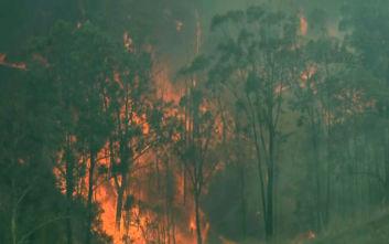 Αυστραλία: Νέο μέτωπο πυρκαγιάς, χωρίς ρεύμα χιλιάδες νοικοκυριά