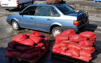 Πάνω από 800 κιλά ακατάλληλων οστρακοειδών κατασχέθηκαν στην Καβάλα