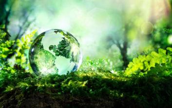 Σπάνια και ευάλωτα στην κλιματική αλλαγή 4 στα 10 φυτά της γης