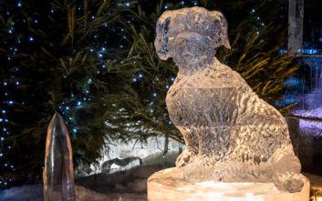 Έπεσε κομμάτι από γλυπτό πάγου και σκότωσε παιδί σε χριστουγεννιάτικη αγορά