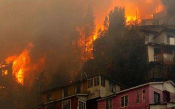 Χιλή: Καταφύγιο για τα κατοικίδια που έμειναν άστεγα από τη πυρκαγιά στο Βαλπαραΐσο