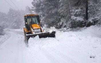 Κακοκαιρία Ζηνοβία: Οι περιοχές της Πελοποννήσου που αντιμετωπίζουν προβλήματα λόγω χιονιού και παγετού