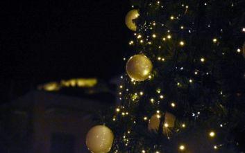 Την Τετάρτη η φωταγώγηση του χριστουγεννιάτικου δέντρου στο Πεδίο του Άρεως