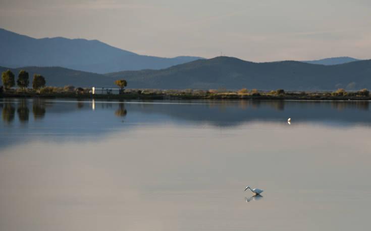Υπέροχες εικόνες στη λιμνοθάλασσα του Μεσολογγίου – Newsbeast