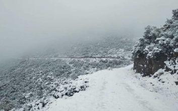 Φθιώτιδα: Χιόνια σε Δομοκό, Μπράλο και Καρπενήσι