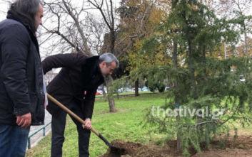 Ο Κωνσταντίνος Ζέρβας φύτευσε έναν κέδρο για το 2020