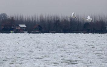 Σερβία: Ανατράπηκε βάρκα με μετανάστες στον Δούναβη