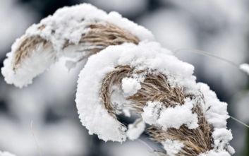 Καιρός: Έκτακτο δελτίο επιδείνωσης με χιόνια, ισχυρές βροχές και καταιγίδες