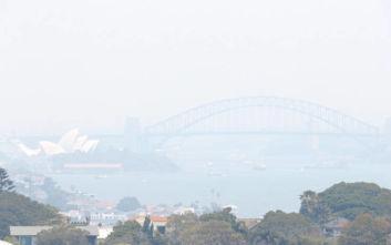 Απίστευτες εικόνες από το Σίδνεϊ, σύννεφο πυκνού καπνού έχει σκεπάσει την πόλη