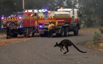 Αυστραλία: Οι πυρκαγιές απειλούν τα αποθέματα νερού του Σίδνεϊ