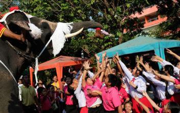 Ταϊλάνδη: Ελέφαντες ντυμένοι Αγιοβασίληδες μοιράζουν δώρα στα παιδιά
