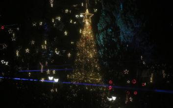 Εντυπωσιακές εικόνες στο Σύνταγμα: «Άναψε» το Χριστουγεννιάτικο δέντρο παρά τη βροχή