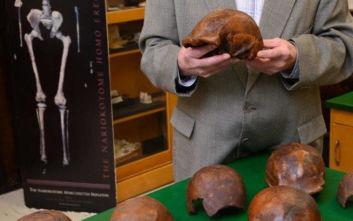 Ηλικίας 110.000 ετών τα τελευταία απολιθώματα του Homo erectus