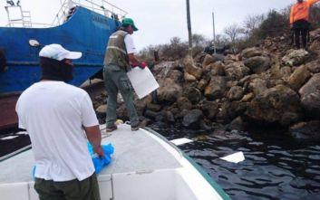 Νησιά Γκαλαπάγκος: Υπό έλεγχο η κηλίδα ντίζελ που απειλούσε το εύθραυστο οικοσύστημα