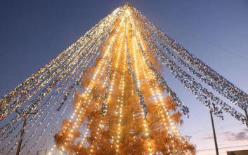 Ιαπωνία: Ρεκόρ Γκίνες με χριστουγεννιάτικο δέντρο με 51.626 κάρτες