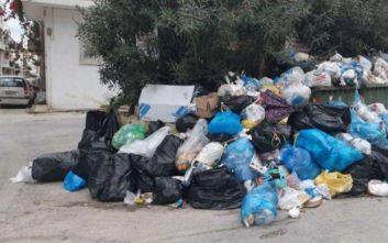 Ξεκίνησε η αποκομιδή των απορριμμάτων από τους δρόμους της Ζακύνθου