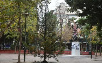 Εξάρχεια: Το μήνυμα του Κώστα Μπακογιάννη για το δέντρο που τυλίχτηκε στις φλόγες