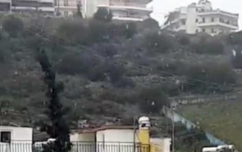 Χιόνι τώρα και στην Αθήνα: Νιφάδες σε Πετρούπολη και Περιστέρι
