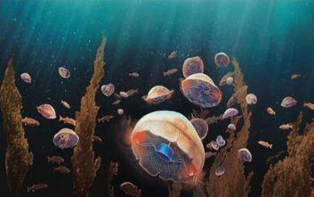 Βιονική μέδουσα κολυμπάει 3 φορές πιο γρήγορα από την κανονική