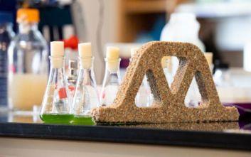 Zωντανό μπετόν από βακτήρια και άμμο γεννάει νέα τούβλα