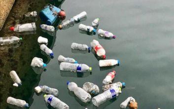 Περισσότερα από 800 κιλά σκουπιδιών «ψαρεύτηκαν» από τον Θερμαϊκό