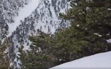 Η είσοδος στο φαράγγι της Σαμαριάς «χάθηκε» από το πυκνό χιόνι