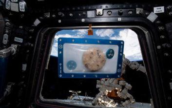 Το πρώτο τρόφιμο που παρασκευάστηκε στο Διάστημα