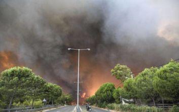Μαθητές αναδασώνουν το σημείο της Πεντέλης όπου ξεκίνησε η φονική φωτιά του 2018