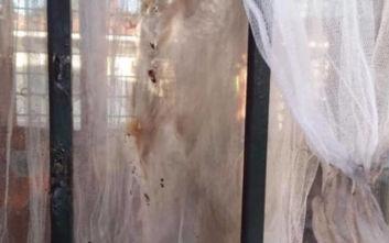 Θεσσαλονίκη: Έβαλαν φωτιά σε νηπιαγωγείο στο Μελλισσοχώρι